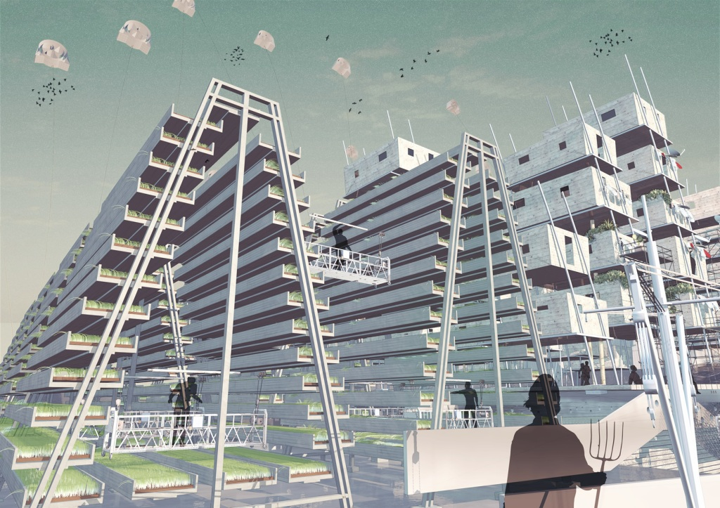 6_Leonard-Schrage_Ark-Perspective-Rice