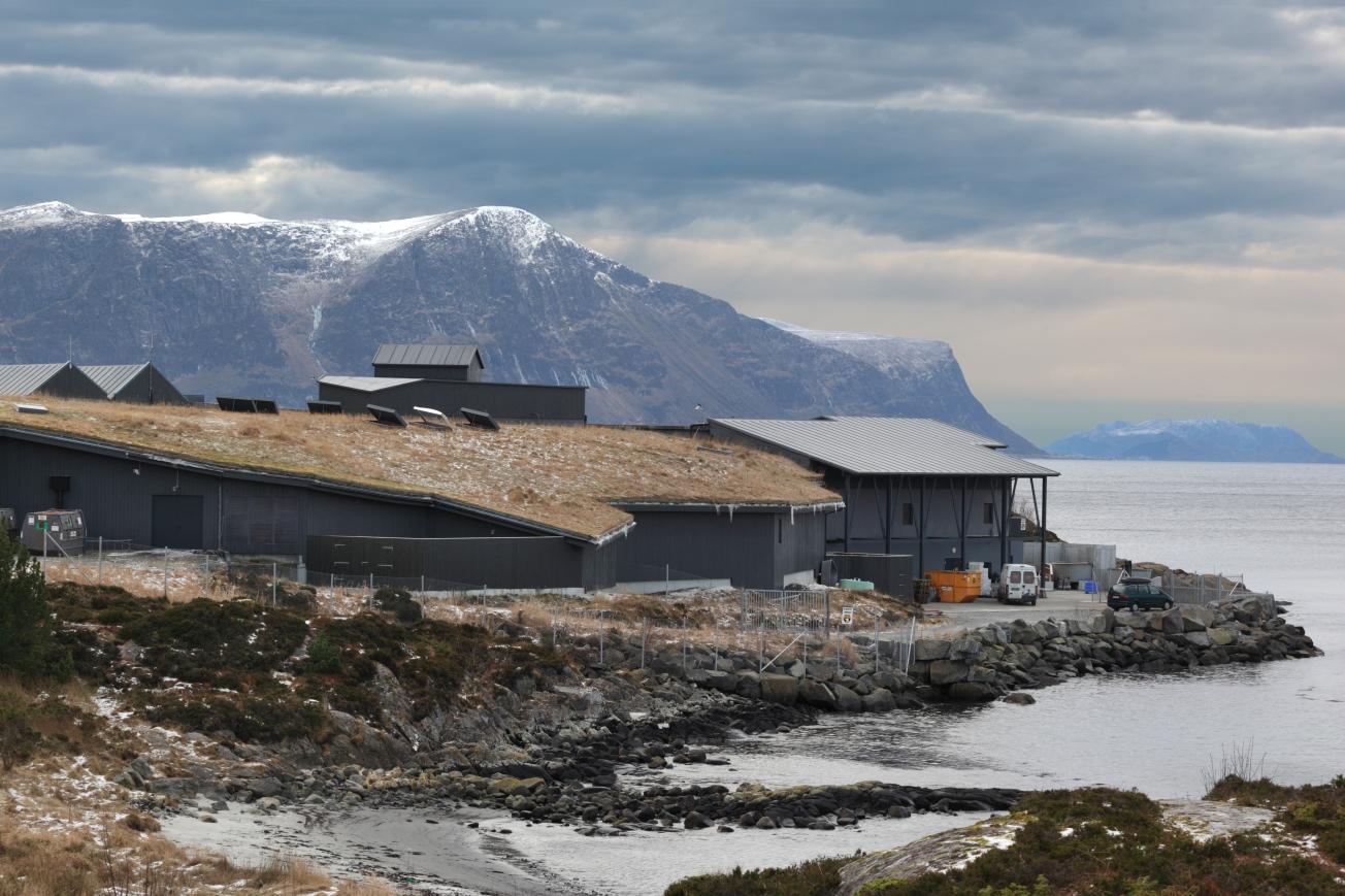 Alesund Aquarium Category: Sense of Place  Photographer: David Borland  Architect: Torstein Lervik Arkitektkontor  Location: Alesund - Norway