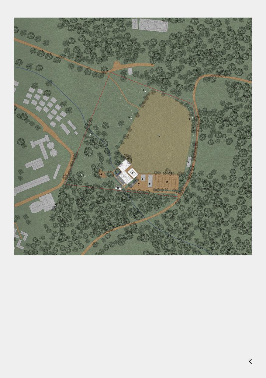 KaruraForestPage3