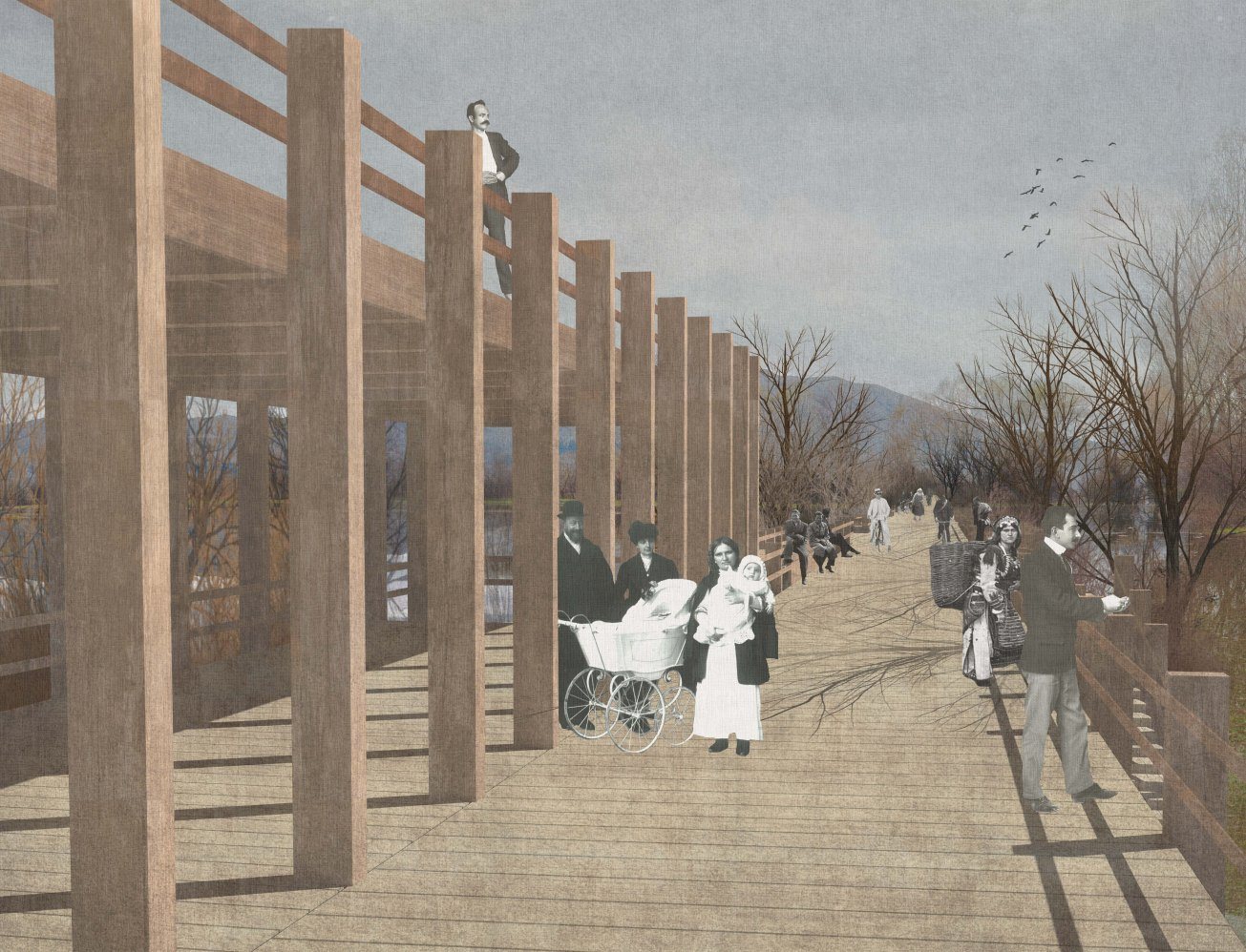 Into  wooden walkways, Marson Korbi, Polytechnic of Bari