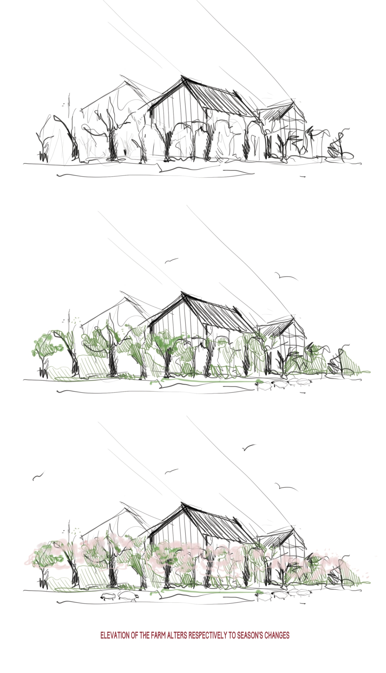 Orchard farm with cider factory,Sonia Dubois,student,4th year,University of Arts Poznan, bachelor of architecture_13